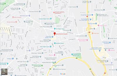 Google Harita Bilgileri
